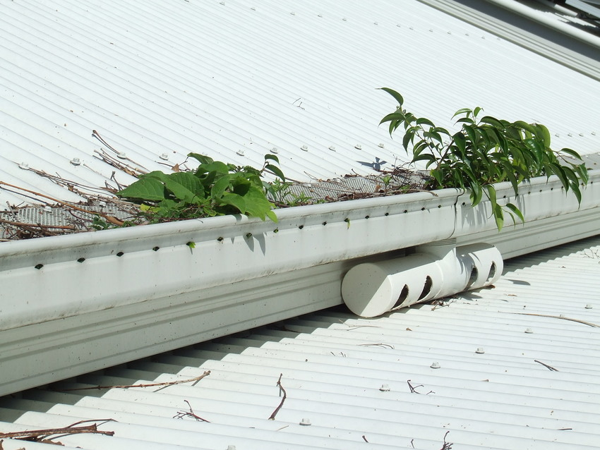 Gutter Cleaning And Installers Of Guardian Gutter Guard In